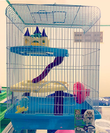 hamster cage chateau