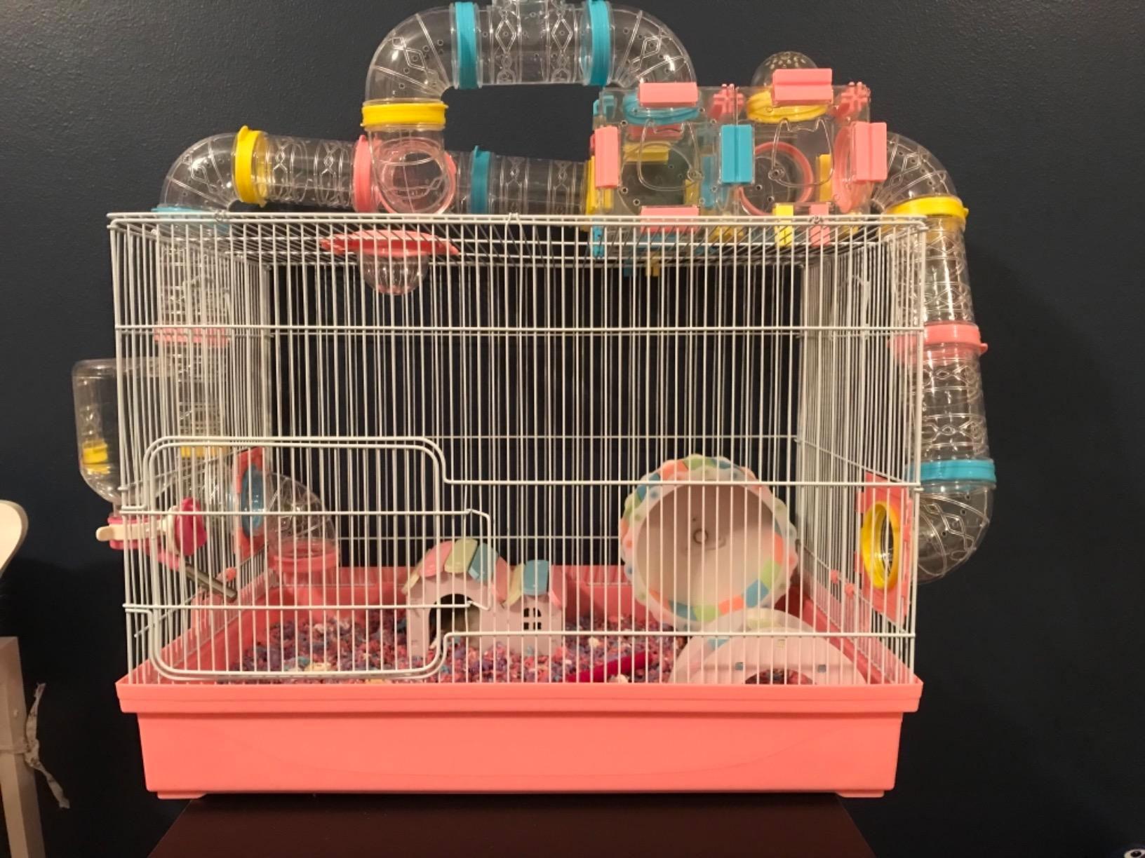 cage pour petit hamster russe